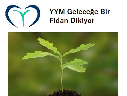 yym-fidan-projesi